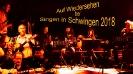 Singen_in_Schwingen_2017_22